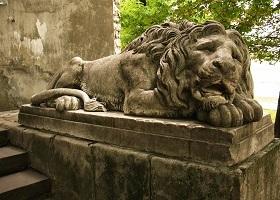 Квест о чем молчат львы